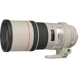 Canon EF 300mm F4.0L USM IS Telephoto Lens