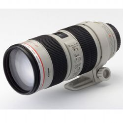 Canon 70-200mm f/2.8L USM Telephoto Zoom Lens 2569A004