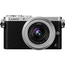 Panasonic Lumix DMC-GM1 Mirrorless Micro Four  12-32mm Lens